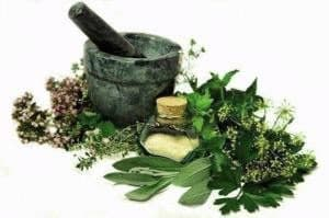 Травы для лечения дерматита